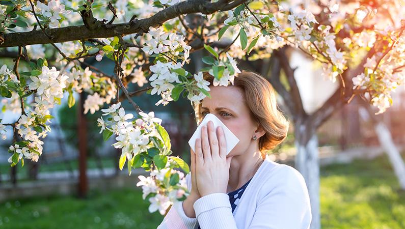 Springfield Clinic Allergy, Asthma & Immunology