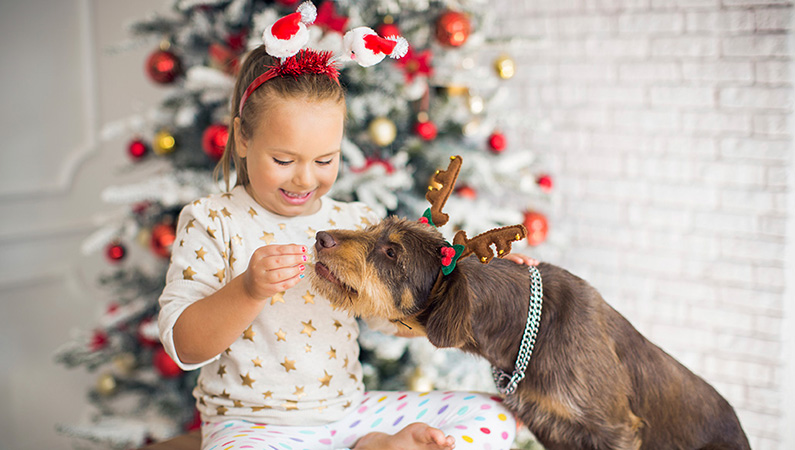Young girl in holiday attire feeding dog with festive Christmas tree in the background