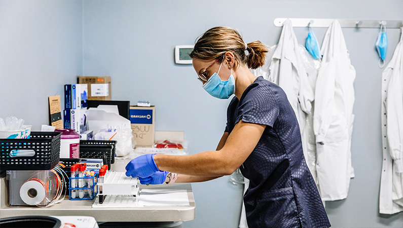 Female medical professional working with laboratory specimens